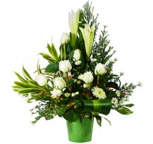 G-Ray-Florist-Online-Flower-Delivery-Kl-Penang-Reflection