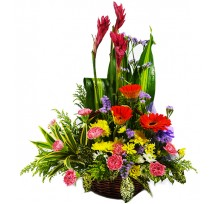 G-Ray-Florist-Online-Flower-Delivery-Kl-Penang-Spring Fall