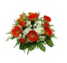 G-Ray-Florist-Online-Flower-Delivery-Kl-Penang-Bountiful Carnations