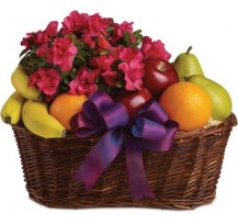 G-Ray-Florist-Online-Flower-Delivery-Kl-Penang-Fruit Splash