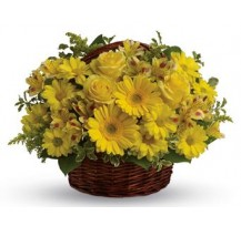 G-Ray-Florist-Online-Flower-Delivery-Kl-Penang-Basketful of Sunshine