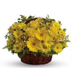 Basketful of Sunshine