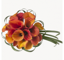 G-Ray-Florist-Online-Flower-Delivery-Kl-Penang-Orange Calla Lily