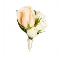 G-Ray-Florist-Online-Flower-Delivery-Kl-Penang-Peach Champange