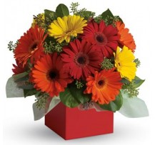 G-Ray-Florist-Online-Flower-Delivery-Kl-Penang-Glorious Girl