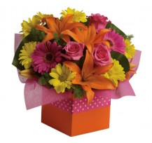 G-Ray-Florist-Online-Flower-Delivery-Kl-Penang-Starbust Glory