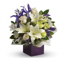 G-Ray-Florist-Online-Flower-Delivery-Kl-Penang-Grace Kelly